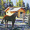 Dutch Creek Ranch Tack Shed